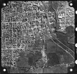 taza-1949.jpg